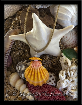 Ke Iki Beach Shell Pile Jumbo Sunrise Shell Puka Shell Seaglass & Chips Cord Necklace