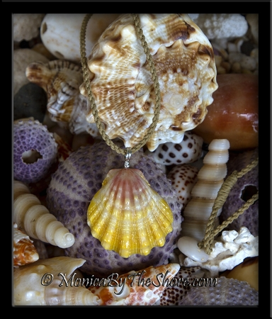Pastel Pink and Yellow Extra Large Hawaiian Sunrise Shell Corded Necklace