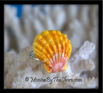 Perfect Pink, Orange & Yellow Hawaiian Sunrise Shell Silver Ring