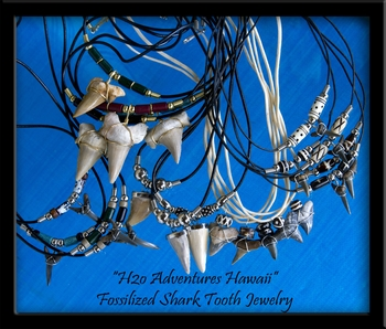 Sharks Teeth Jewelry H2o Adventures Hawaii