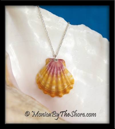 Soft & Lovely Pink Yellow Peach Hawaiian Sunrise Shell Silver Chain Necklace