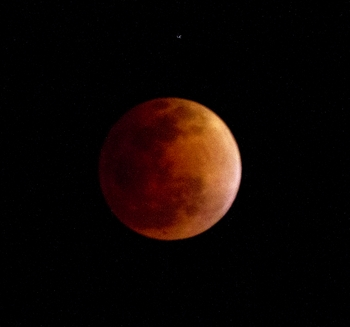The Blood Moon of 4-14-2014, the first of four between now and Sept 28 2015