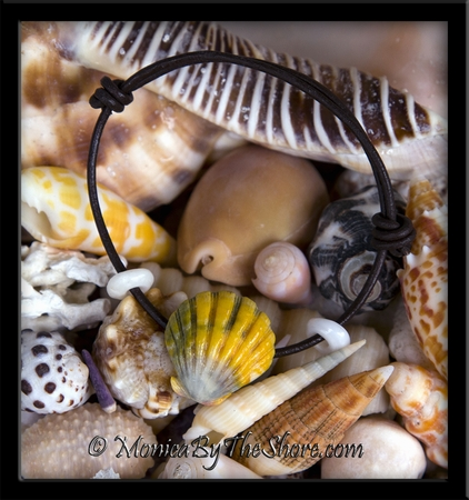 """The """"Naturalist"""" Multi-Color Sunrise Shell on Rolled Leather with Puka Shells Bracelet"""