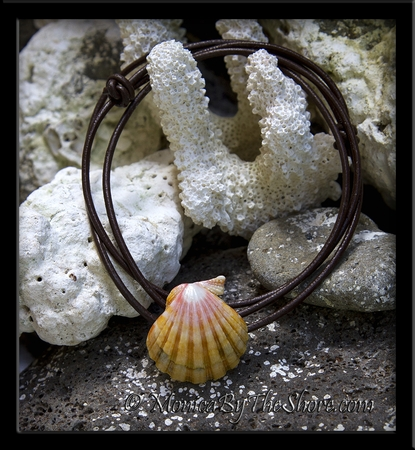 """""""The Naturalist"""" Sunrise Shell 3 Way Leather Bracelet, Necklace or Anklet"""