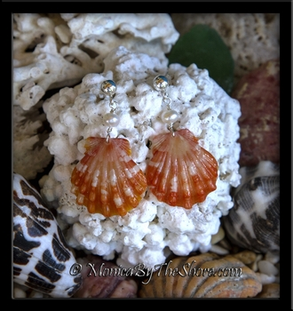 Tiger Stripe Hawaiian Sunrise Shells with Pearls Silver Post Earrings
