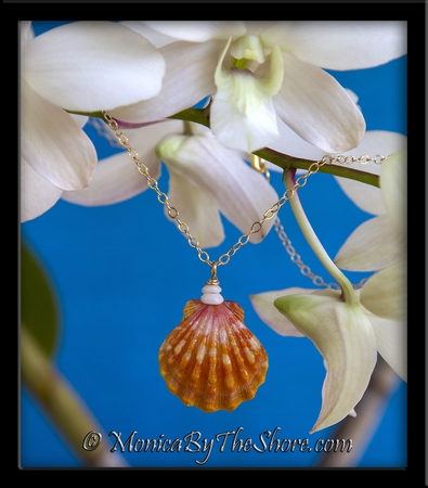 """Town & Country"" Style Hawaiian Sunrise Shell & Puka Shells Gold Necklace"