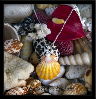 """Town & Country"" Style Sunrise Shell, Puka Shell & Swarovski Crystal Necklace"
