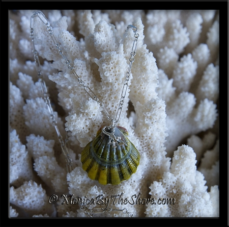 "Unique ""Moonrise"" Green Sunrise Shell & Sterling Silver Gecko Necklace"