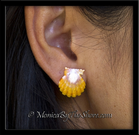 Yellow Pink & White Sunrise Shell Dainty Post Earrings