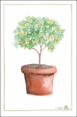 Orange Tree Single Gift Enclosure Card