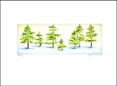 Spruce Trees - Box of 10 Note Cards