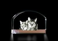 Crystal Magnifier (Cats)