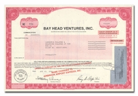 Bay Head Ventures, Inc.