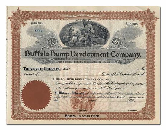 Buffalo Hump Development Company (Washington)