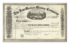 New Mexico Mining Company