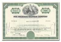 Pan American Sulphur Company (Issued to Bache & Co.)