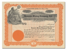 Roanoke Mining Company, Ltd. (Idaho)