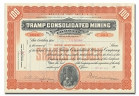 Tramp Consolidated Mining Company (South Dakota)