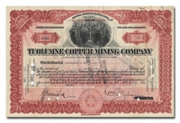 Tuolumne Copper Mining Company (Arizona)