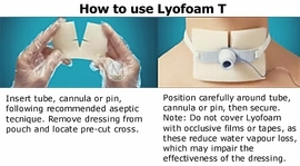 "Lyofoam T Polyurethane Foam Dressings (3.6""x2.6"") (Box of 10)"