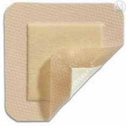 Mepilex Border Lite Silicone Foam Dressings Home Page