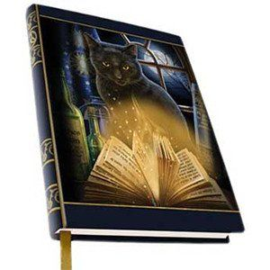 Bewitching Familiar ~ Unlined Journal