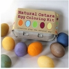 Natural Ostara Egg Coloring Kit