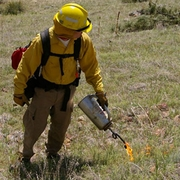 Wildland Fire Tools