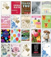 Everyday Greeting Cards - 20 Pc. Set
