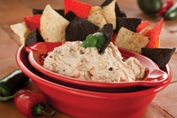 Mama Lisa's Southwest Bean Dip Mix