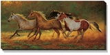 Gold Dust � Horses Wrapped Canvas Art