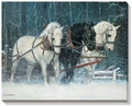 Snowfall by Chris Cummings Canvas Wrap