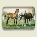 Yearlings - Serving Tray