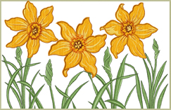 Daffodils Applique