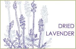 New Dried Lavender Collection<br>June 26, 2012