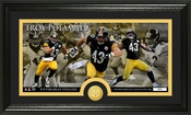 Troy Polamalu Bronze Coin Panoramic Photo Mint
