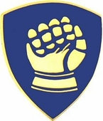 46th Infantry Division Pin