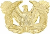 Army Warrant Officer Pin