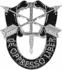 Special Forces Crest Pin