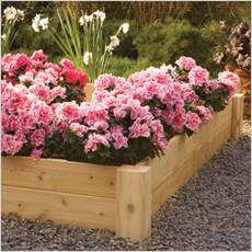 Planter Beds & Boxes