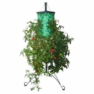 Felknor Topsy Turvy TT101101 Tomato Tree - click to enlarge
