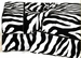 Twin XL Extra Long Zebra Sheet Set