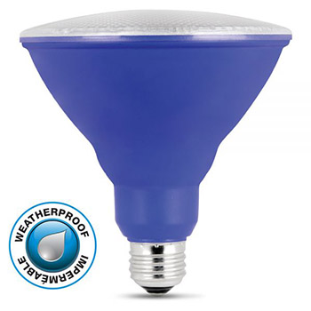 LED PAR38 Blue 10K #61717-FET