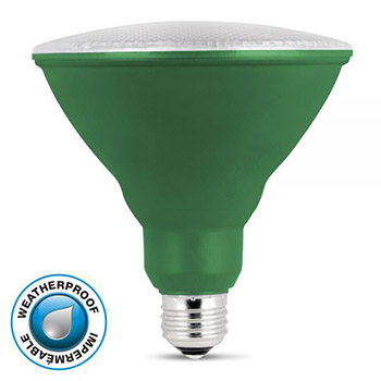 LED PAR38 Green 10K #61718-FET