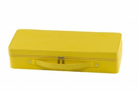 Invicta Yellow 16 Watch Display Case IPM144
