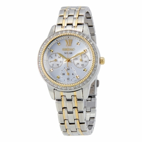 Seiko SNE874 Recraft Ladies Quartz Watch