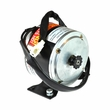 24 Volt 300 Watt Motor with 11 Tooth #25 Chain Sprocket (Currie Technologies)