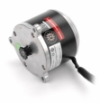 24 Volt 900 Watt Electric Motor with 11 Tooth #25 Chain Sprocket (Currie Technologies)