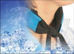 "Ice Bandana by Icy Cools™ <a href=""http://www.healthandbodystore.com/cool-downz-icy-neck-wrap.html"">ITEM CHANGED - CLICK HERE FOR NEW ICY WRAPS</a>"