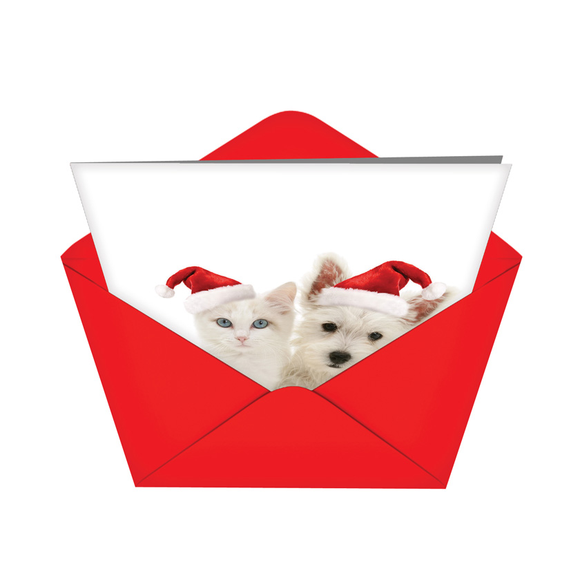 Christmas copy cats nobleworks by design christmas card warren